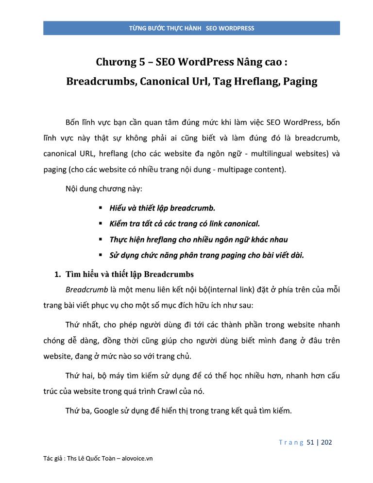 SEO WordPress Nâng cao - Breadcrump Canonical Hreflang Paging - alovoice